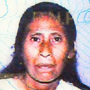 María Enriqueta Matute